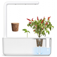 EMSA kas Station CLICK GROW SMART GARDEN 3 wit